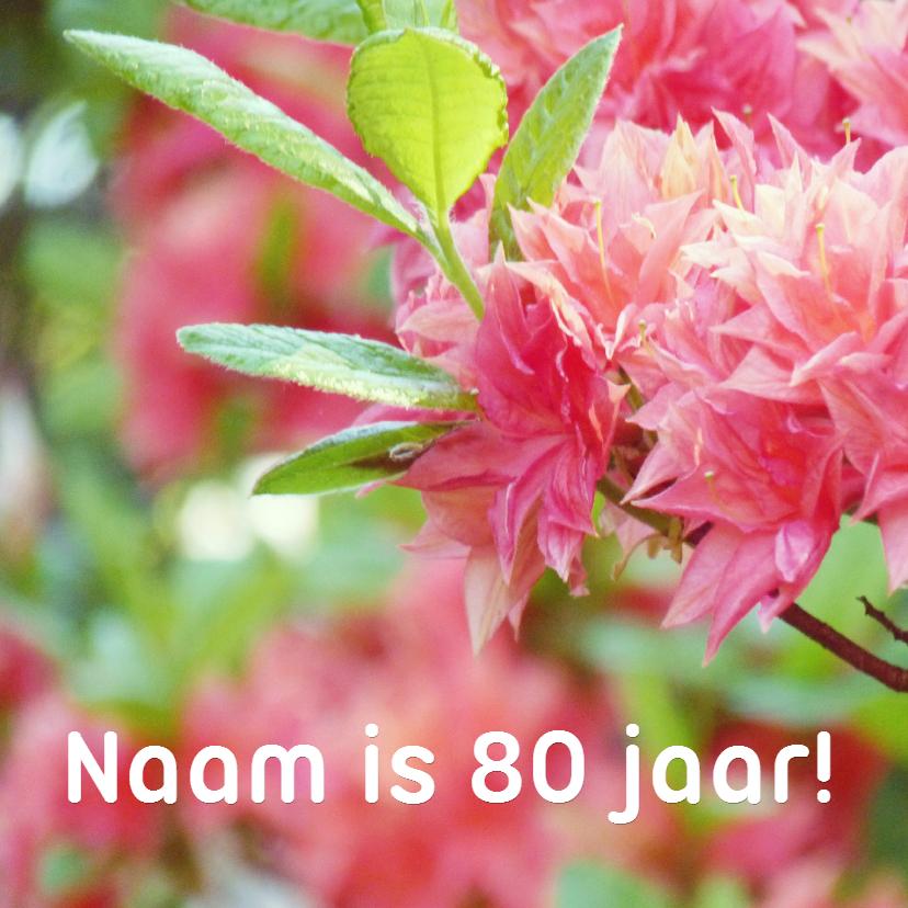 Verjaardagskaarten - Verjaardagskaart rhododendron 80