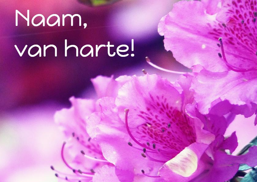 Verjaardagskaarten - Verjaardagskaart roze rhododendron