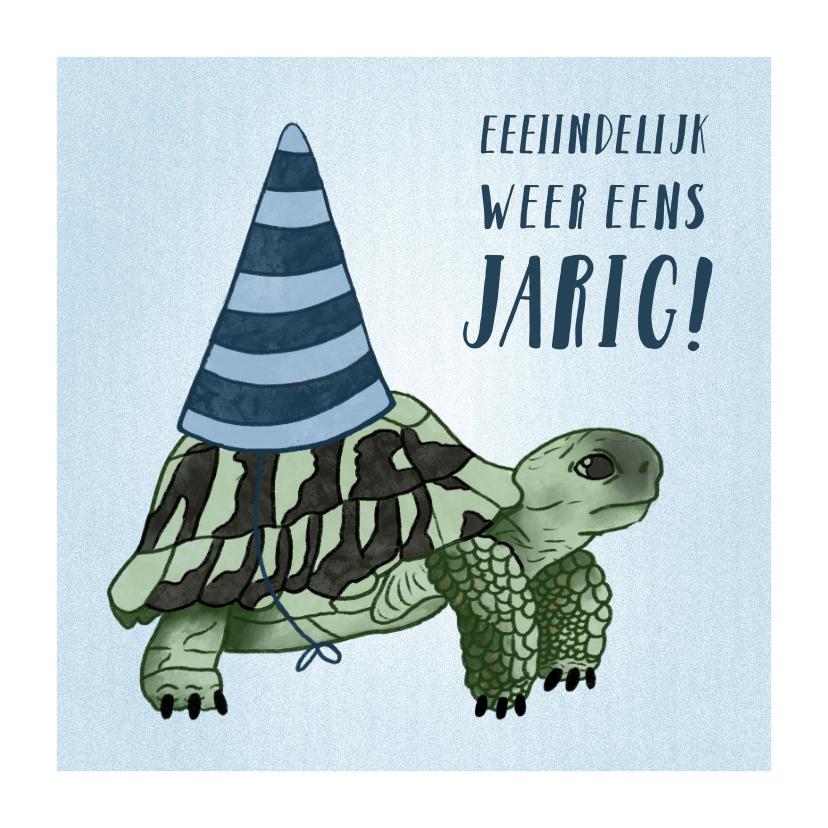 Verjaardagskaarten - Verjaardagskaart schrikkeljaar met schildpad en hoedje