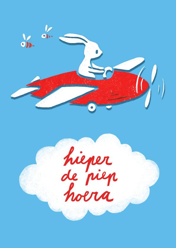 Verjaardagskaarten - Verjaardagskaart vliegtuig kind