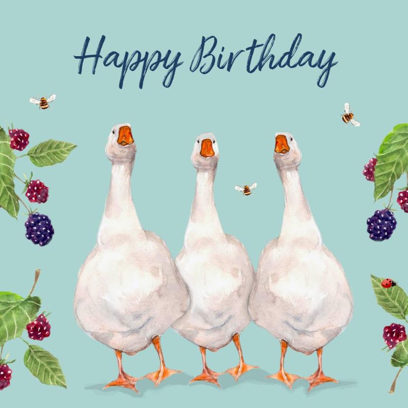 Verjaardagskaarten - Verjaardagskaart Vrolijke ganzen