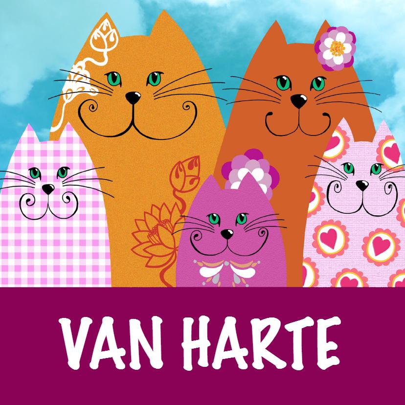 Verjaardagskaarten - Verjaardagskaart vrolijke katjes