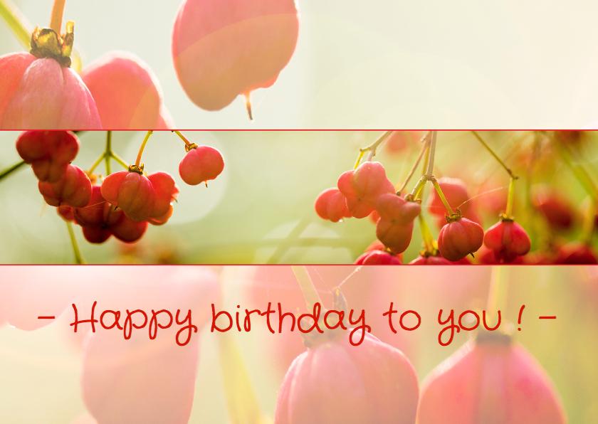 Verjaardagskaarten - Verjaardagskaart, Vrouw,  MM