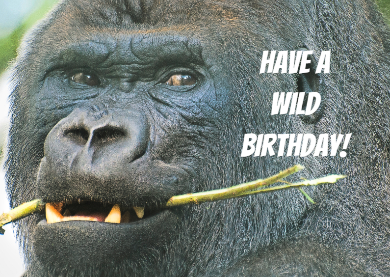 Verjaardagskaarten - Verjaardagskaart-Wild Birthday!