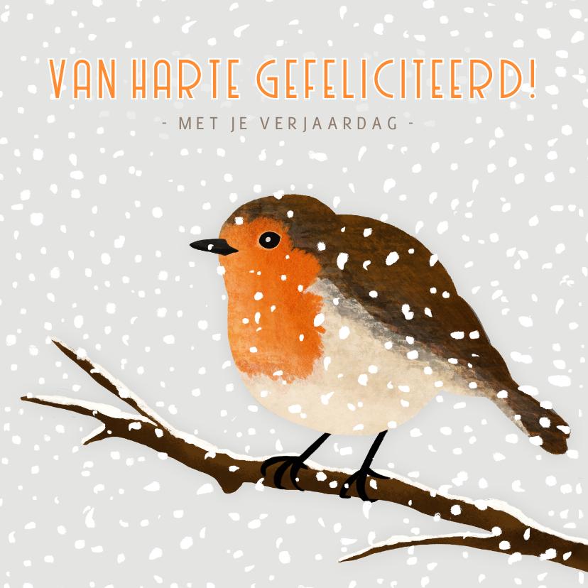 Verjaardagskaarten - Verjaardagskaart winter met een roodborstje in de sneeuw