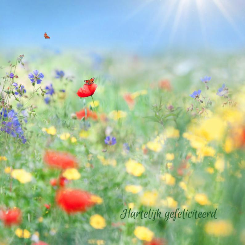 Verjaardagskaarten - Vertel het met zomerbloemen