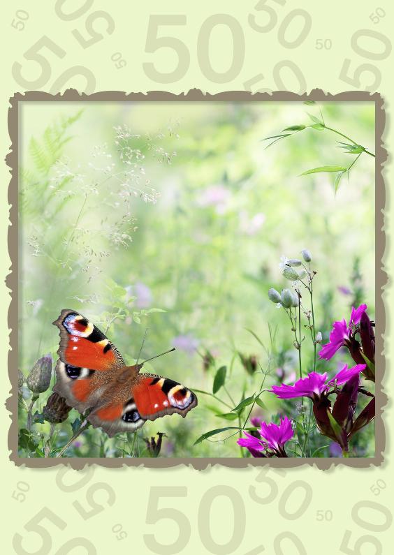 Verjaardagskaarten - Zomerbloemen met vlinder 50 jaar