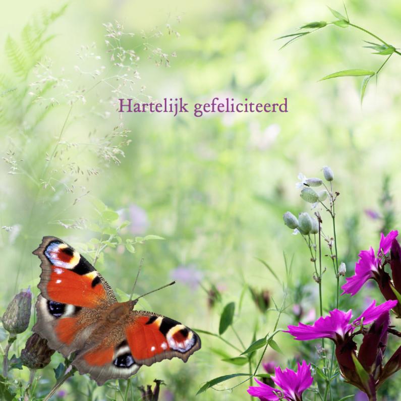 Verjaardagskaarten - Zomerbloemen met vlinder