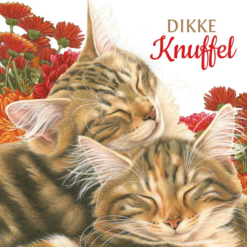Vriendschap kaarten - Dikke Knuffel kaart met katten en bloemen