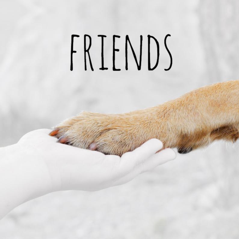 Vriendschap kaarten - Friends - BK