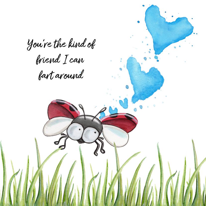 Vriendschap kaarten - Vriendschap kaarten lieveheersbeestje laat scheten