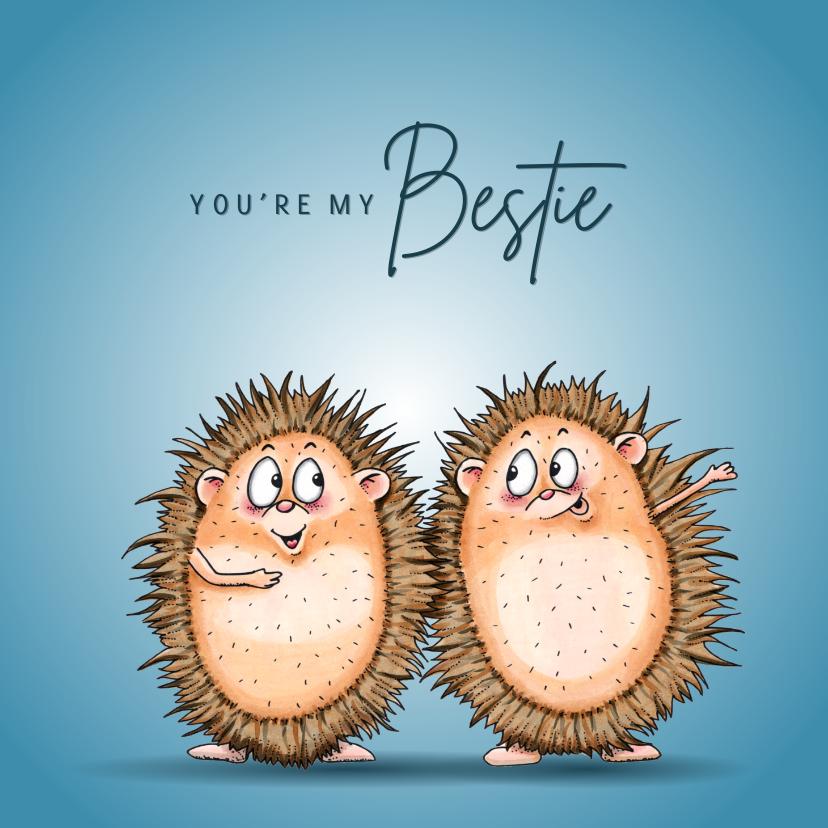 Vriendschap kaarten - Vriendschap kaarten twee egels your my bestie
