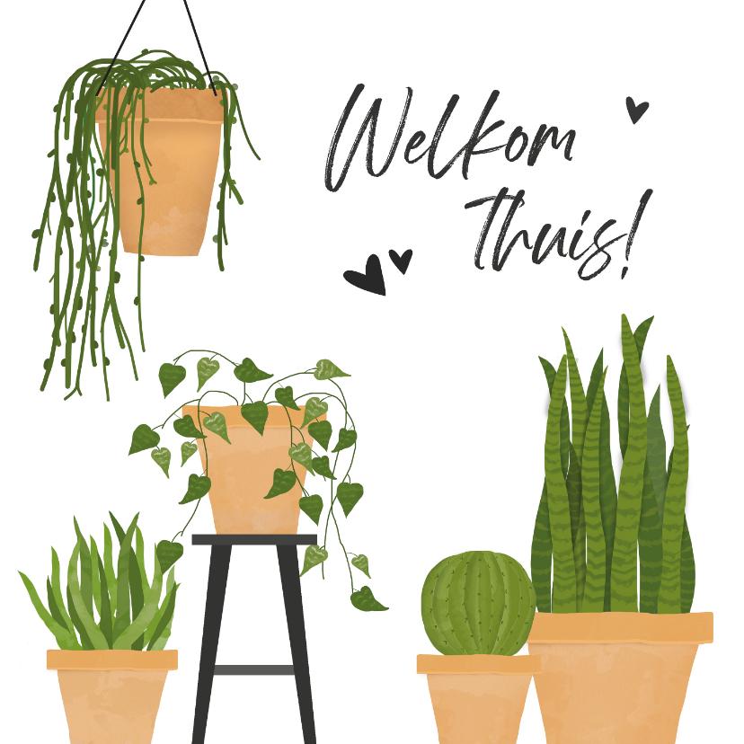 Welkom thuis kaarten - Welkom thuis kaart met groene kamerplanten