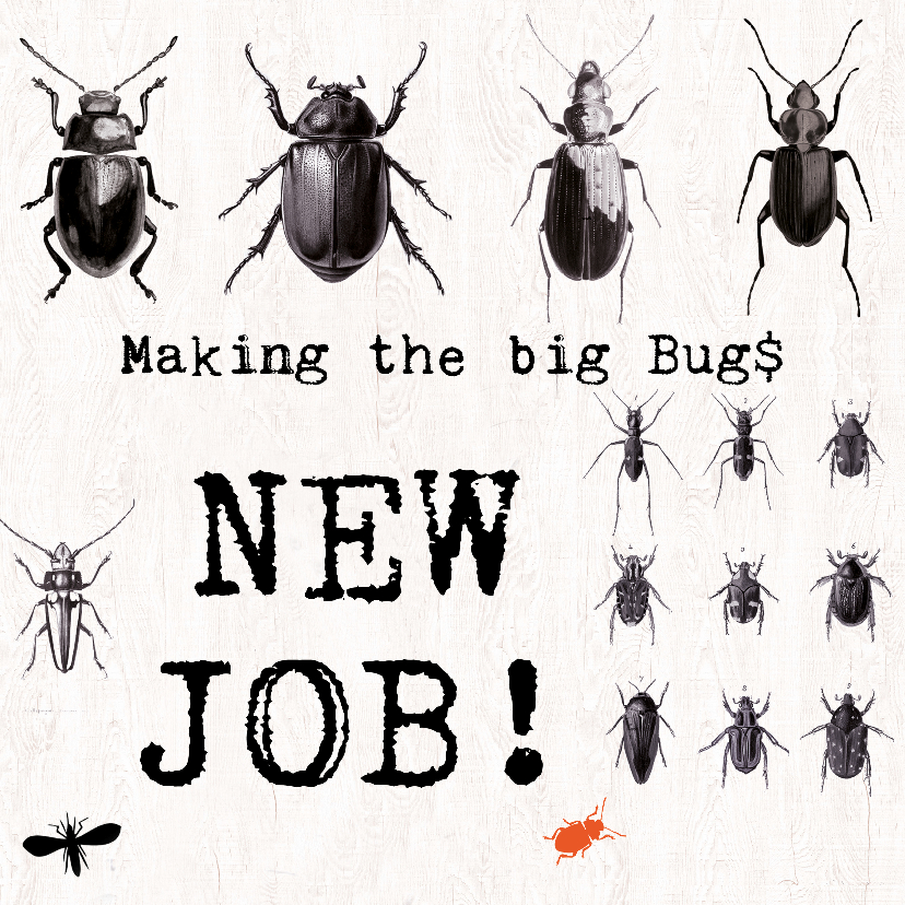 Wenskaarten divers - Nieuwe baan - MAKING THE BIG BUGS!