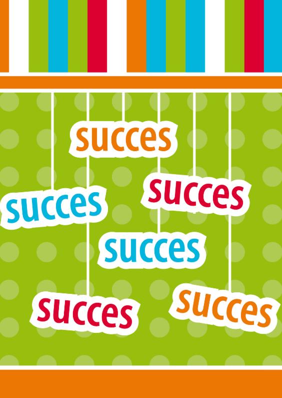 Wenskaarten divers - succes 133