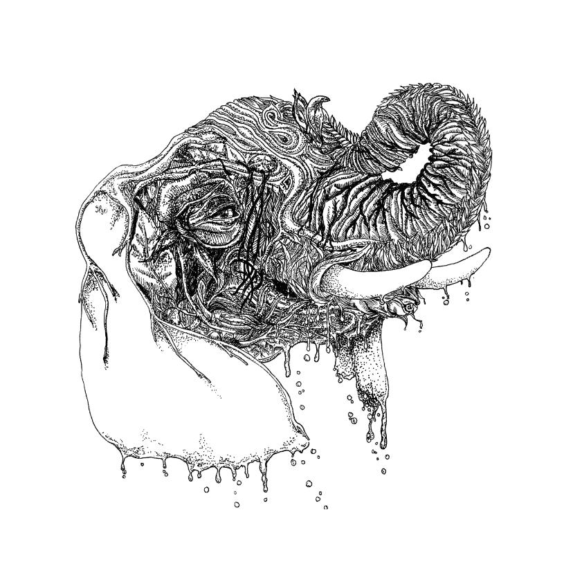 Woonkaarten - Olifant illustratie zwart-wit