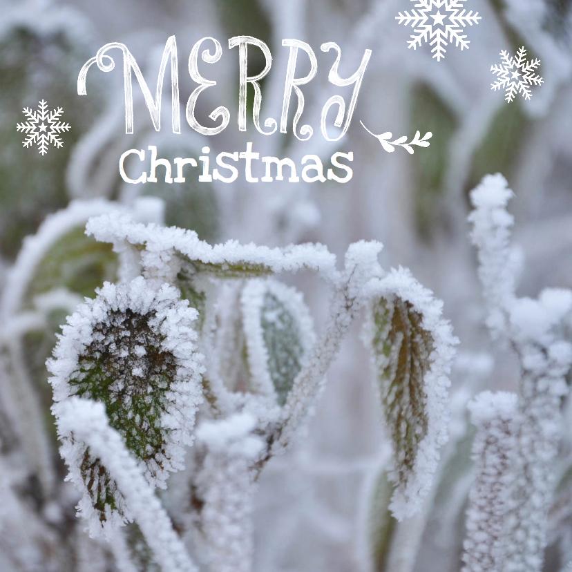 Zakelijke kerstkaarten - Zakelijke kerstkaart winter blad