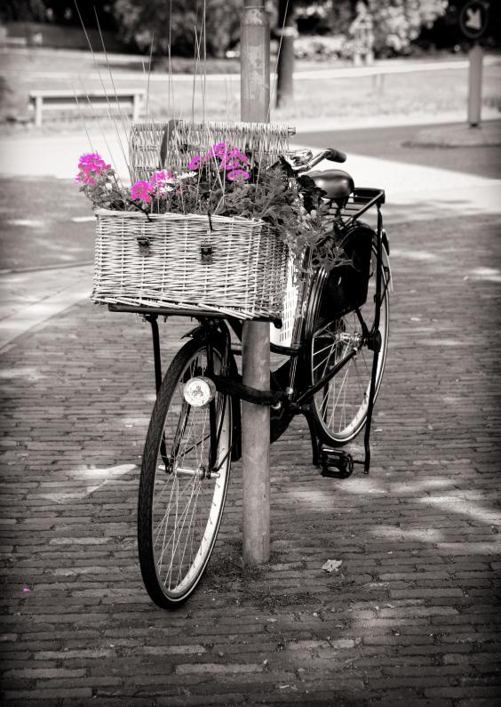 Zomaar kaarten - Bloemen in fietsmandje