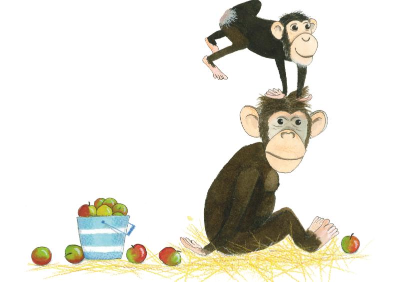 Zomaar kaarten - chimpansee