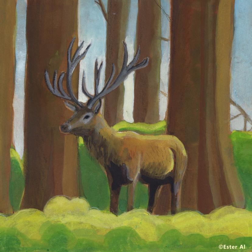 Zomaar kaarten - Hert in het bos
