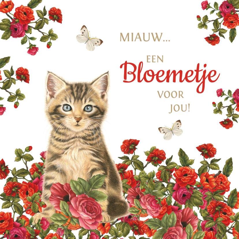 Zomaar kaarten - Kaart met kitten miauw een bloemetje voor jou