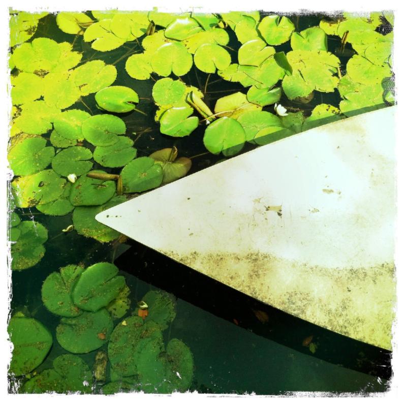 Zomaar kaarten - kano met waterlelies