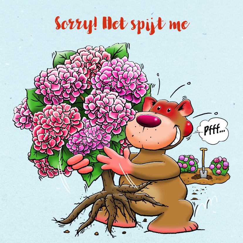Zomaar kaarten - Leuke sorry kaart voor een vriendin met Hortensia-struik