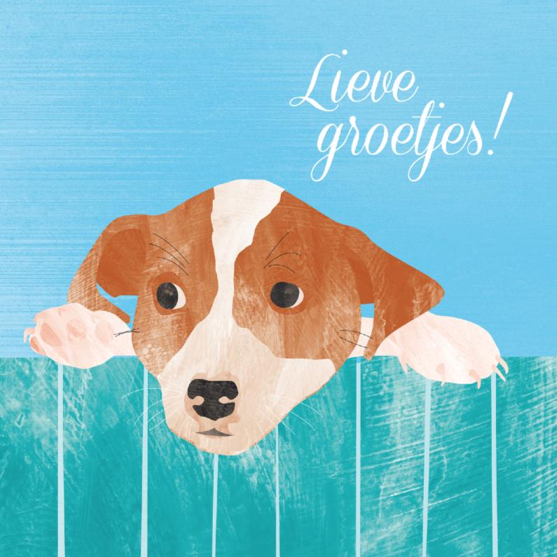Zomaar kaarten - Lieve groetjes van schattig hondje