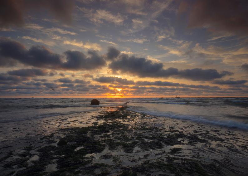 Zomaar kaarten - Mooie zon langs de kust