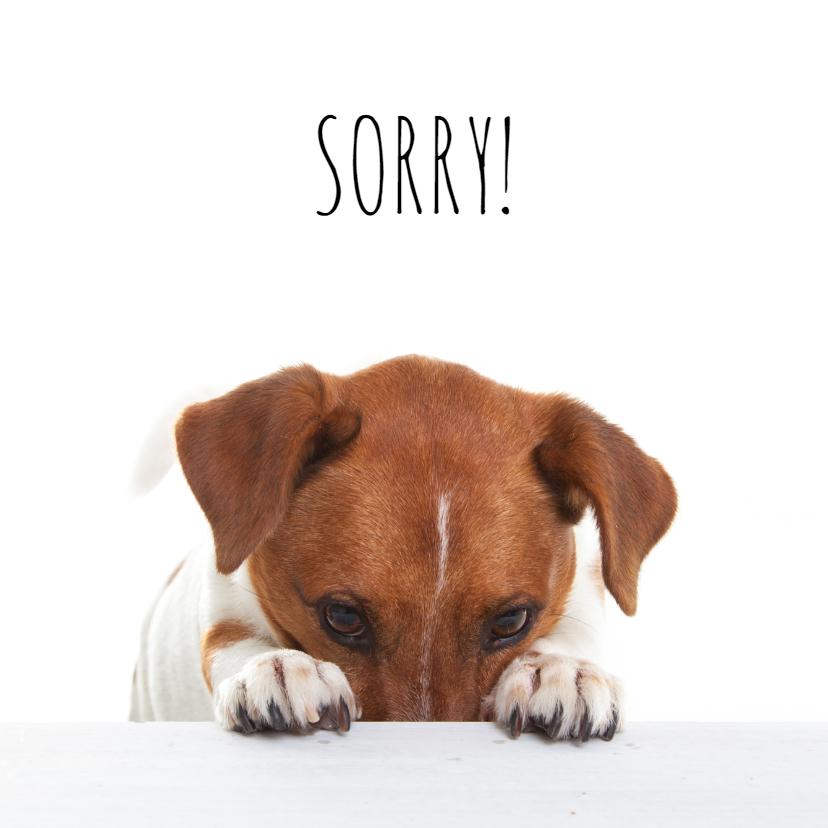 Zomaar kaarten - Sorry kaart - Boris de hond - Spijt