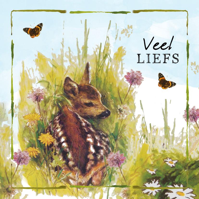 Zomaar kaarten - Veel liefs kaart met klein hertje in het gras