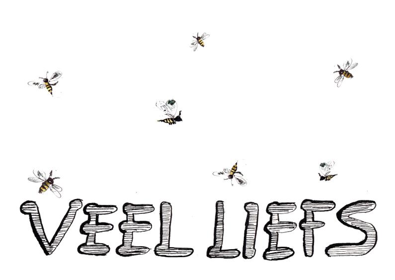 Zomaar kaarten - Veel liefs met insecten