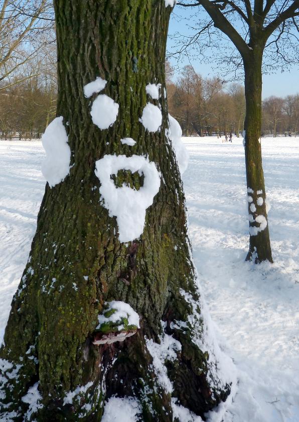 Zomaar kaarten - Wenskaart Sneeuwpret boom