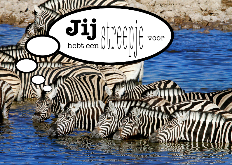Zomaar kaarten - Zebra 2 - Streepje Voor - OT
