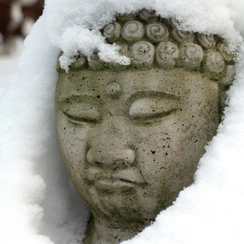 Zomaar kaarten - Zomaar - Boedha in de sneeuw- MW