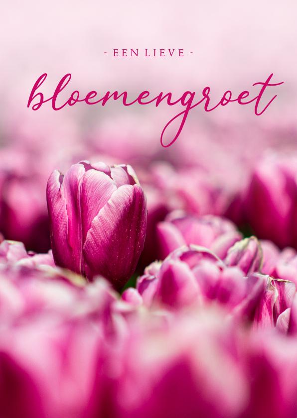 Zomaar kaarten - Zomaar kaart roze tulpen een lieve bloemengroet