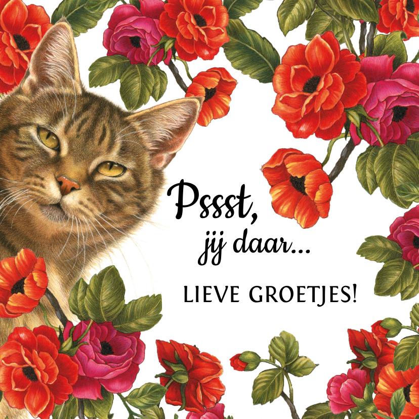 Zomaar kaarten - Zomaarkaart Pssst jij daar lieve groetjes bloemen en katten